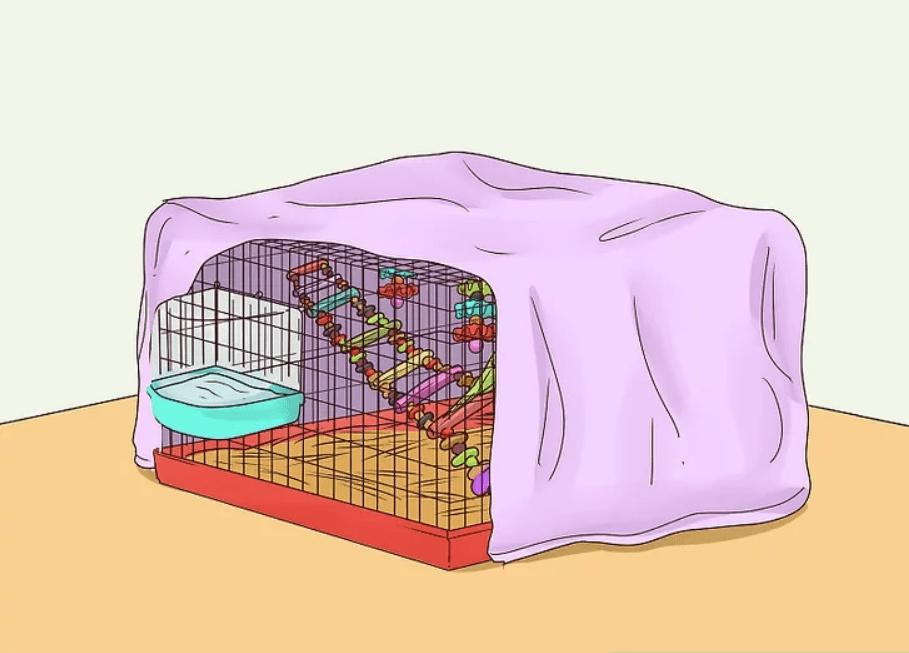 7- Muhabbet Kuşu Bakımı ve Eğitimi
